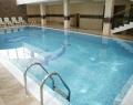 Бассейн отеля Дельфин